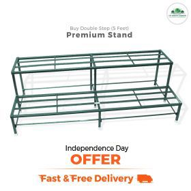 MDG Independence day offer Double Step Stand 5 feet
