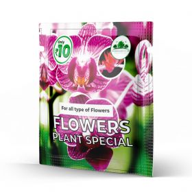 Flower Plant Special