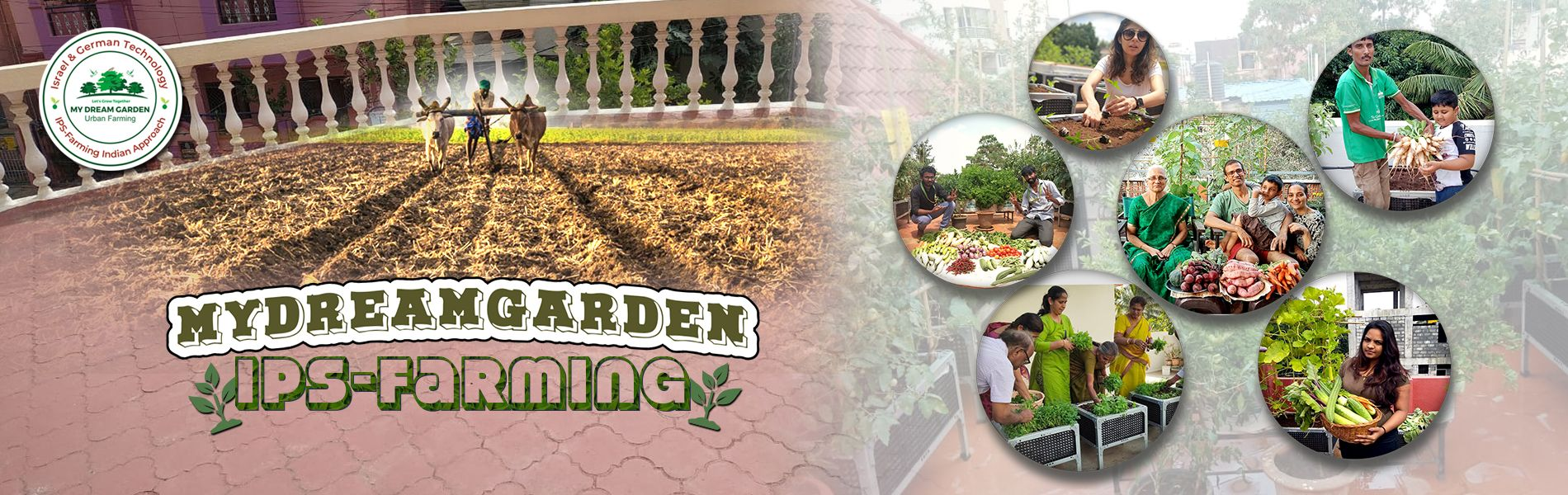 https://www.mydreamgarden.in/urban-farming/magic-planter-box-packages.html