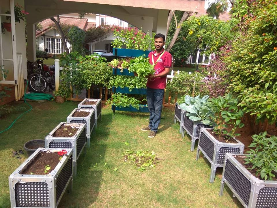 What is a Magic Planter Box? How it benefits your garden?