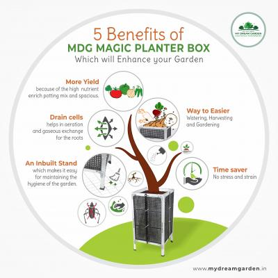 Infographic: 5 Benefits of MDG Magic Planter Box Which Will Enhance Your Garden